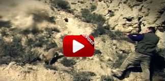 caza de zorros