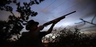 E de caza que