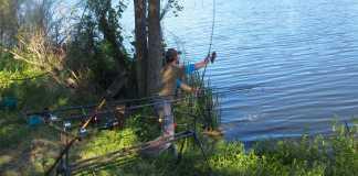 ajustar lanzado pesca