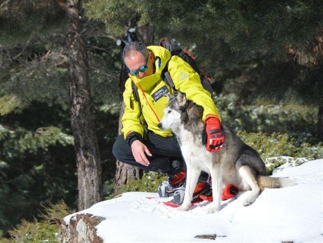 Un malagueño recorrerá el Ártico en homenaje a los perros