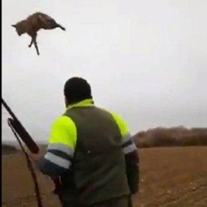 Identificado en Huesca el autor del polémico vídeo en el que maltrata a un zorro