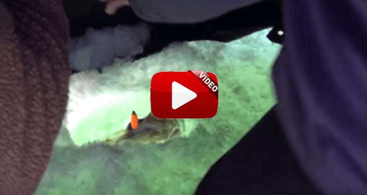 Pesca bajo el hielo: la mejor broma