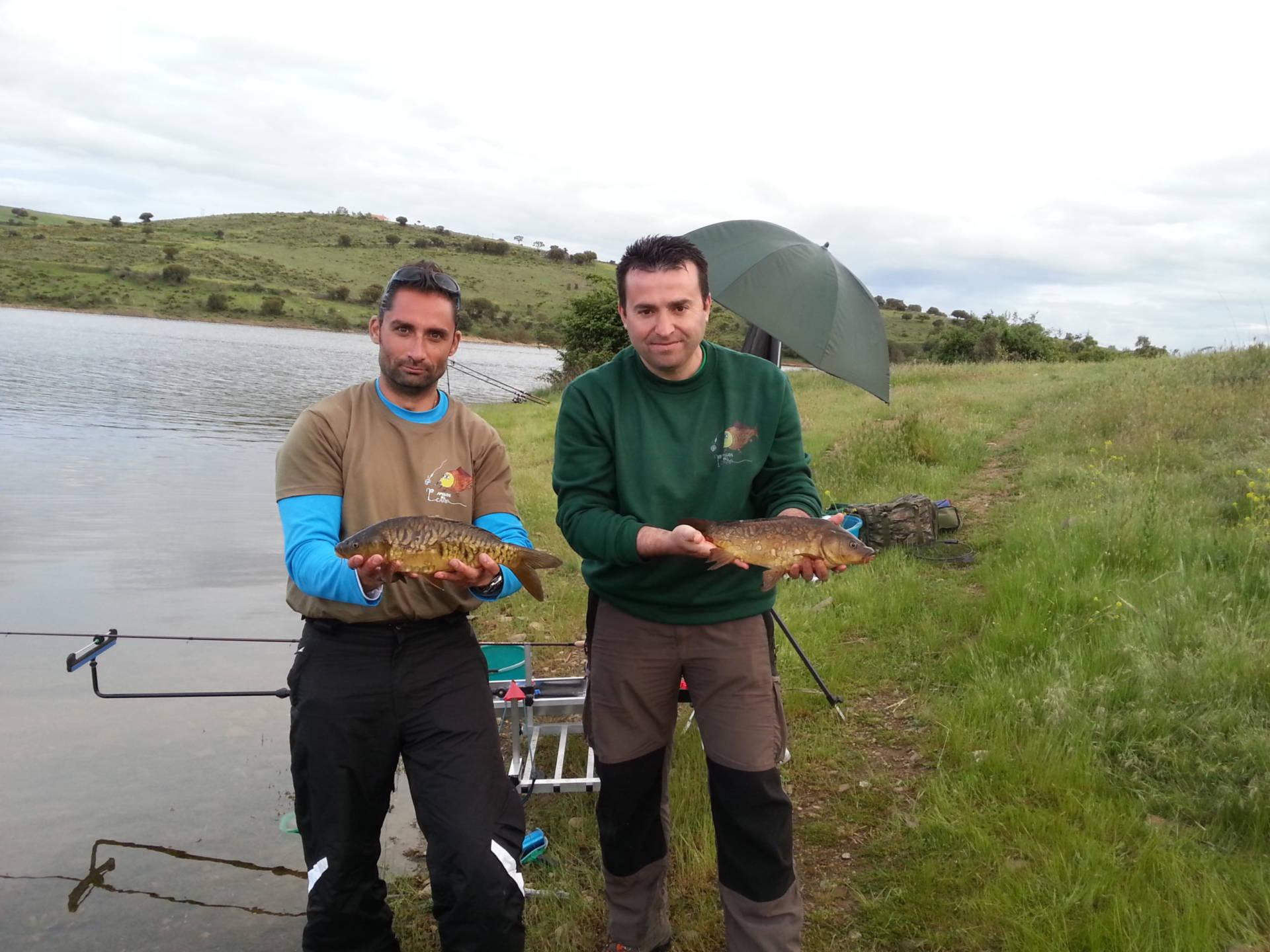 Crónicas de pesca al feeder y de inglesa