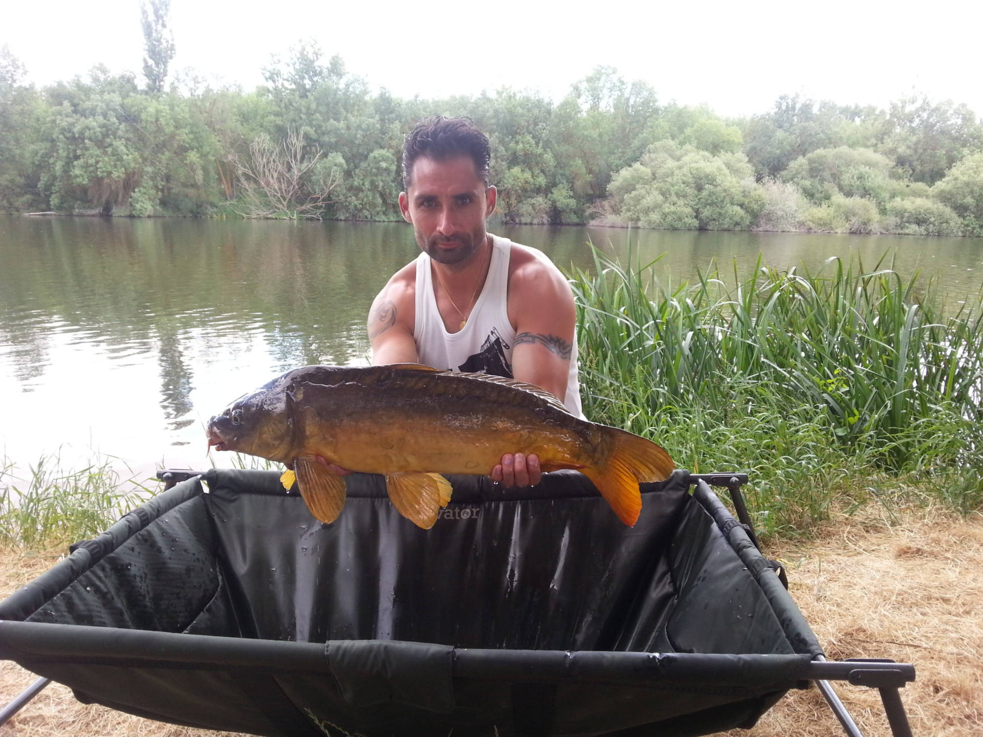 Relatos de carpfishing