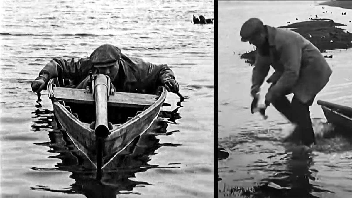 Esta es la curiosa forma de cazar patos que usaban nuestros abuelos (hoy prohibida)