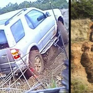 El Seprona los denuncia por conducir su vehículo todoterreno por el campo «y generar daños al entorno»