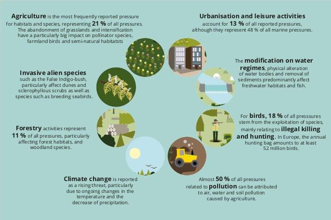 La infografía difundida por la Comisión Europea, donde se mezclan conceptos y categorías induciendo a errores. ©FACE