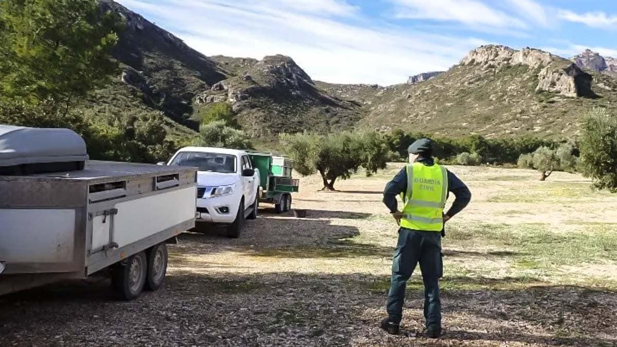 furtivos rehala reserva nacional de caza