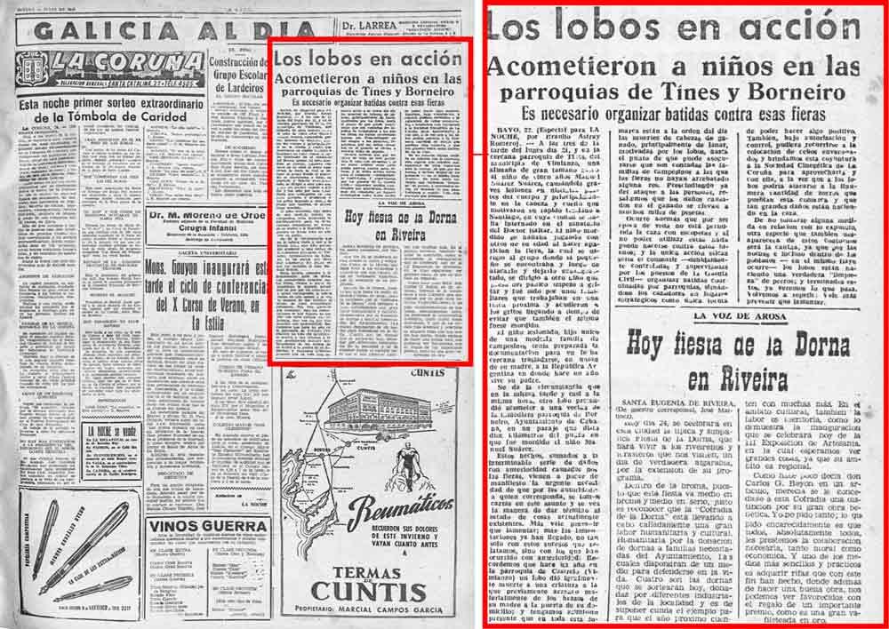 Noticia publicada por el desaparecido periódico La Noche, donde se informa del ataque del lobo a Manuel Suárez.