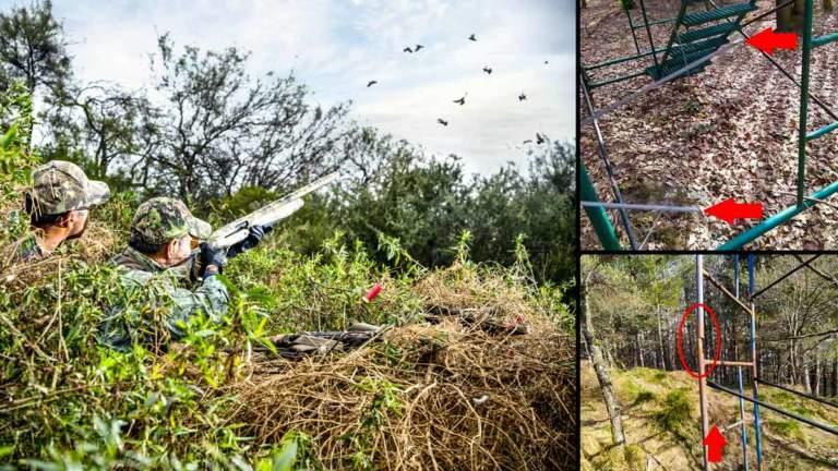 Escena de caza de paloma y los cables de acero, cortados en los puestos. © Shutterstock y Facebook