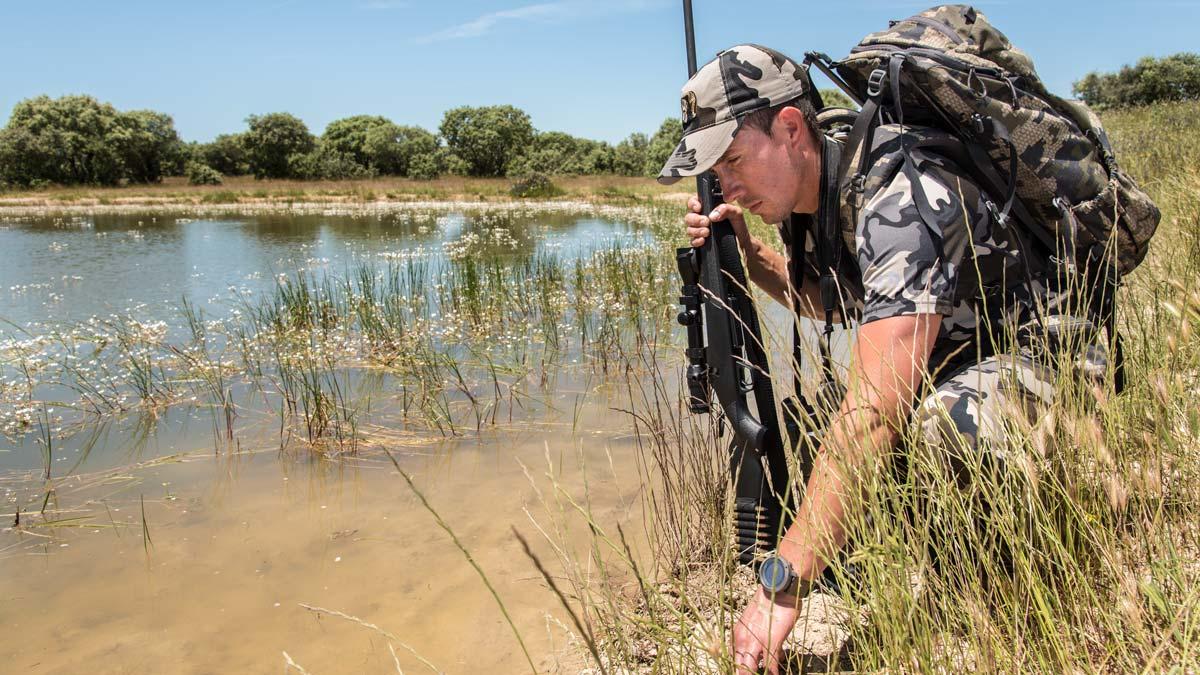 Esta es la situación de la caza en toda España para este fin de semana