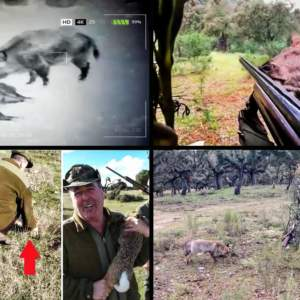 10 anécdotas de caza grabadas que demuestran que los cazadores no somos tan exageramos como dicen