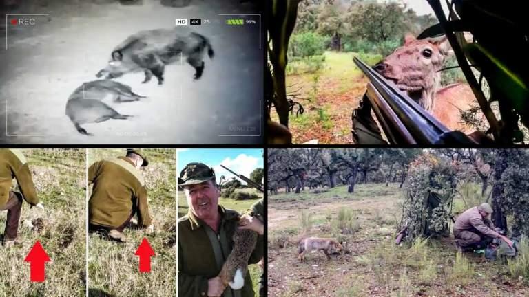 Imágenes de varios vídeos de anécdotas de caza inverosímiles.