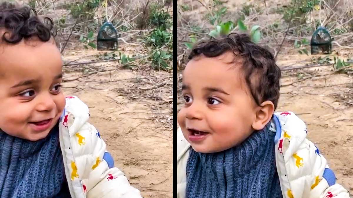 El bebé, imitando el canto de la perdiz. © YouTube