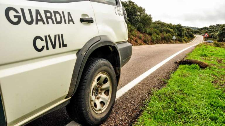 Coche de la Guardia Civil junto a un jabalí atropellado. ©JDG