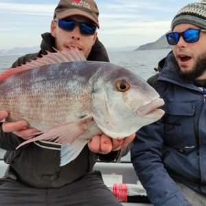 Pesca un pargo de casi 3,5 kilos en Rías Baixas: «Para esta zona, es enorme»