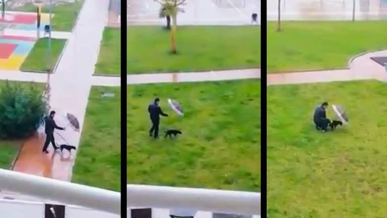 Imagen del vídeo del perro y su dueño bajo la lluvia. ©YouTube