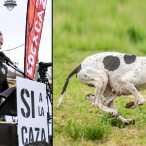Brillante respuesta al Parlamento Europeo tras acusar a los cazadores españoles de maltratar a sus perros