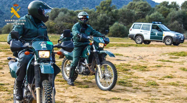 La Guardia Civil los pilla tras grabarse furtiveando a un ciervo y publicar la 'hazaña' en redes sociales