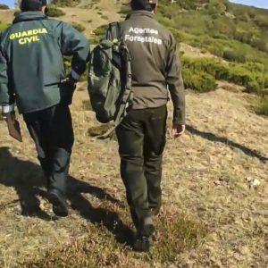 Los delitos de furtivismo aumentaron casi un 70% en 2020 durante la pandemia