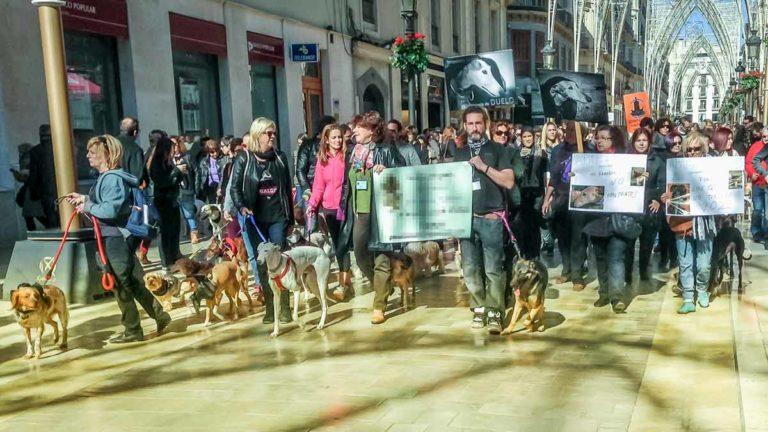 Manifestantes animalistas en Málaga. © Pertti Hagelberg / Shutterstock.com
