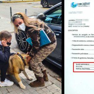 La protectora que retuvo a una perra contra la voluntad de su dueña le pasa la factura: casi 400€