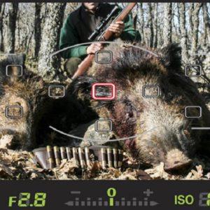 7 errores típicos que estropean tus fotos de caza
