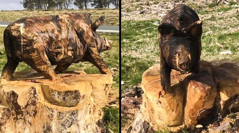 Un cazador de Galicia esculpe un jabalí en un tronco con una motosierra
