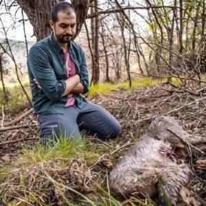 Pedro Ampuero sufre en su propio coto la lacra del furtivismo: dos corzos decapitados