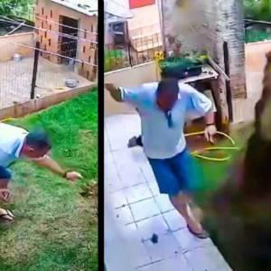 Produce una gran explosión al intentar acabar con los topillos de su jardín mientras sus perros de caza miran