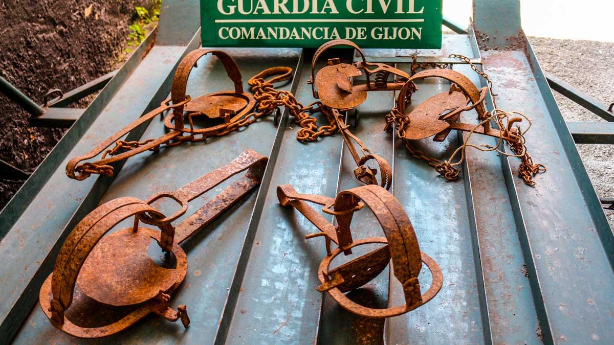 Cepos incautados por la Guardia Civil. © Guardia Civil