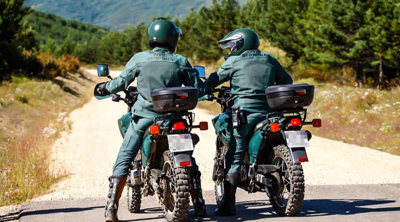 Los delitos de furtivismo se reducen a la mitad en España en solo 13 años