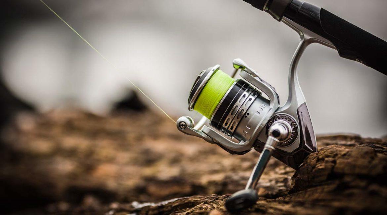Qué línea de pesca elijo: ¿monofilamento, fluorocarbono o trenzado?