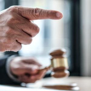 Sentencia histórica del Tribunal Constitucional contra el odio animalista en redes: «No es libertad de expresión»