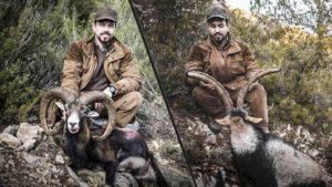 Caza de macho montés y muflón en las sierras de Valencia