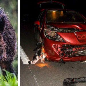 Tiene un accidente con un jabalí que le destroza el coche y se hace cazador