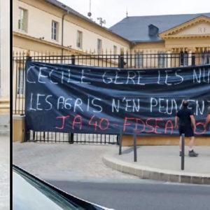 Agricultores franceses liberan tres jabalíes vivos frente a sus políticos para exigir la caza en espera