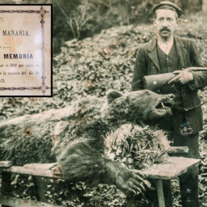 Cuando el oso era perseguido en España y valía 75 reales: así se dio caza al último de Vizcaya