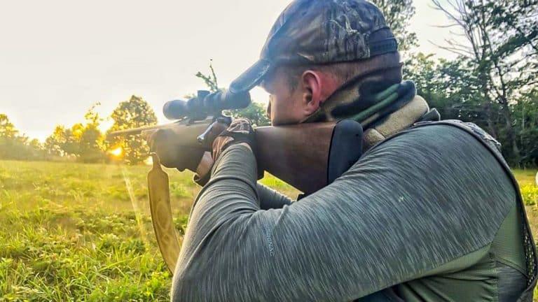 caza corzo herida cabeza