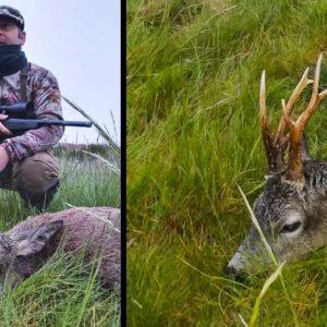 Arrienda un coto a 700 kilómetros de su casa y caza este corzo multipuntas