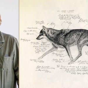 José Ramón de Camps, autor de 'En tierra de lobos': «Regalaría este libro a Teresa Ribera»