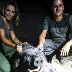Una pareja de Jaén caza en espera un descomunal jabalí