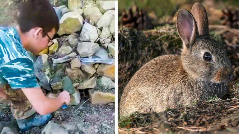 El joven Fernando construye el majano para que los conejos puedan refugiarse y criar. © JyS y Shutterstock