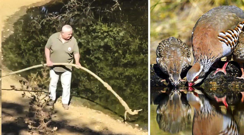 Cazadores de toda España llevan agua y comida a los animales en plena canícula