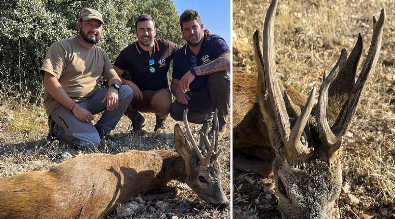 Se estrena cazando corzos con un espectacular macho de 11 puntas en Guadalajara