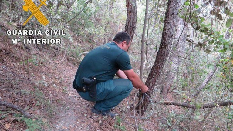 guardia civil lazo furtivo
