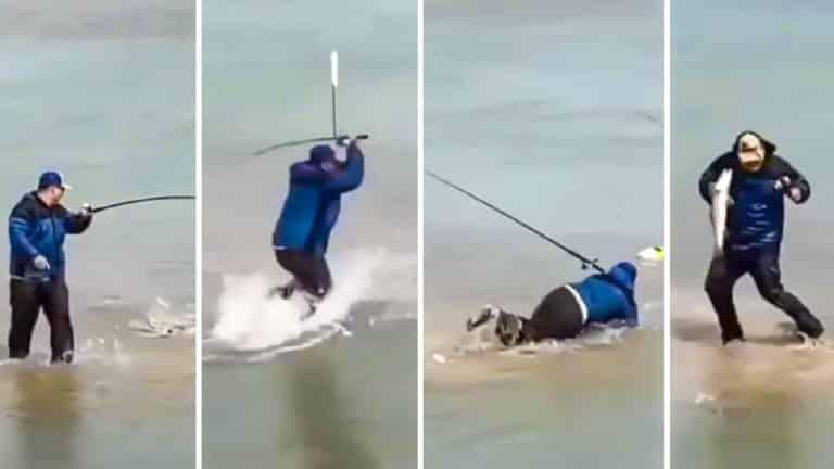 pescador reacción