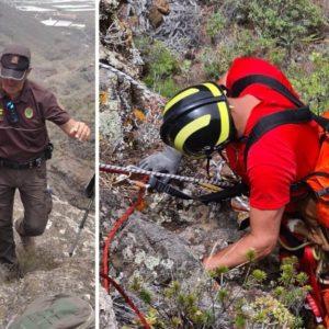 Espectacular rescate de una perra de caza que cayó a un acantilado en Tenerife