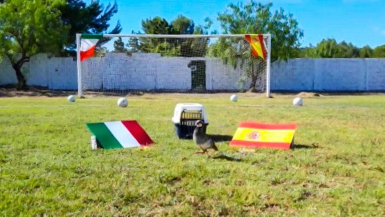 tako-españa-italia-semifinales
