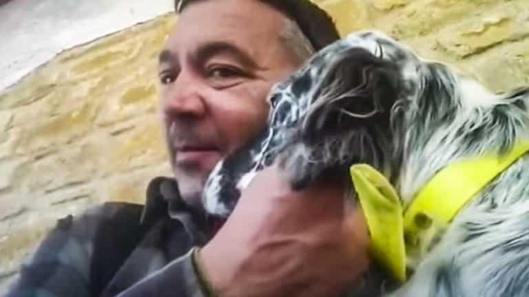 cómo solucionar el miedo a la caza de un perro